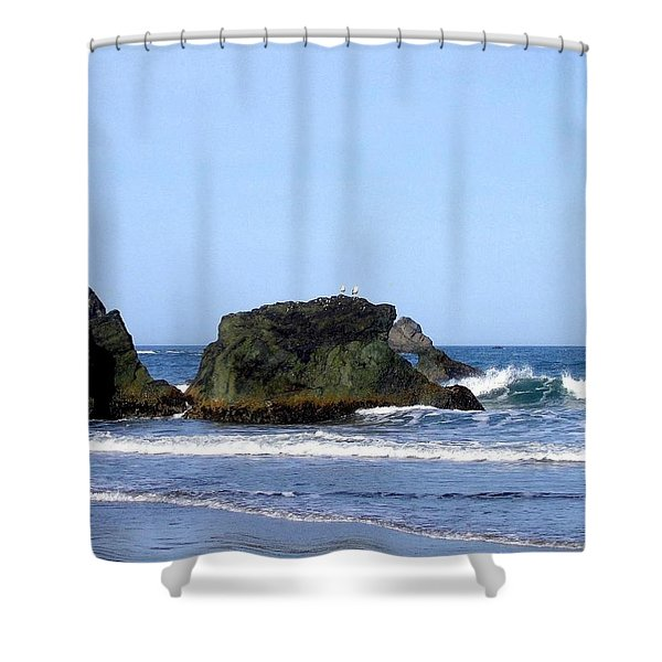 A Pair Of Seagulls On A Rock Shower Curtain by Will Borden