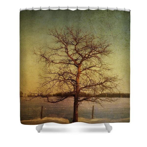 A Pictorialist Photograph Of A Lone Shower Curtain by Roberta Murray