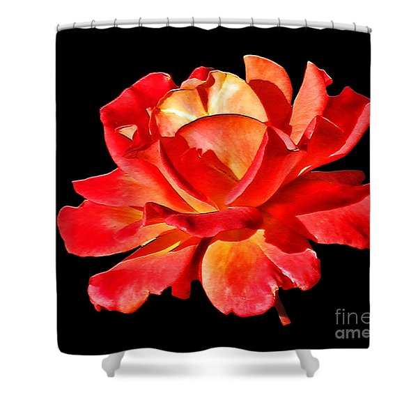 A Red Rose for You 2 Shower Curtain by Mariola Bitner