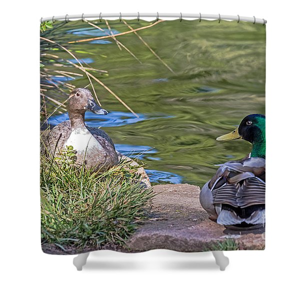 A Restful Moment Shower Curtain by Kate Brown