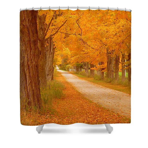 A Romantic Country Walk In The Fall Shower Curtain by Lingfai Leung