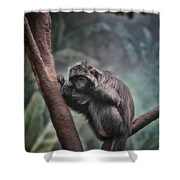 A Sense of Sadness Shower Curtain by Karol  Livote