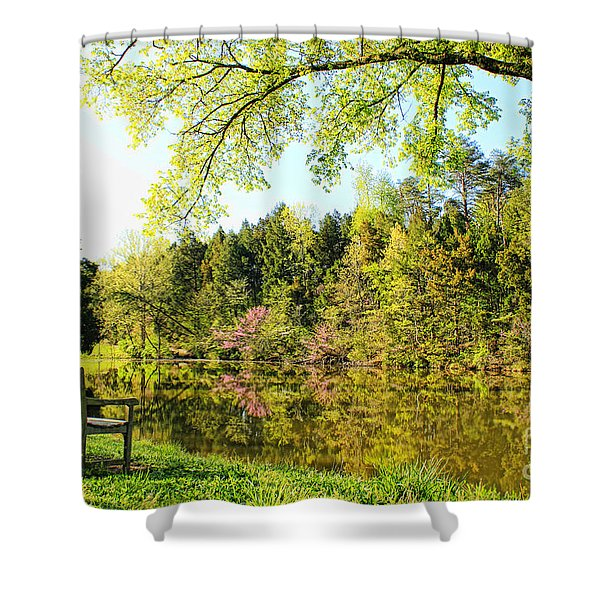 A Spring Morning Shower Curtain by Darren Fisher