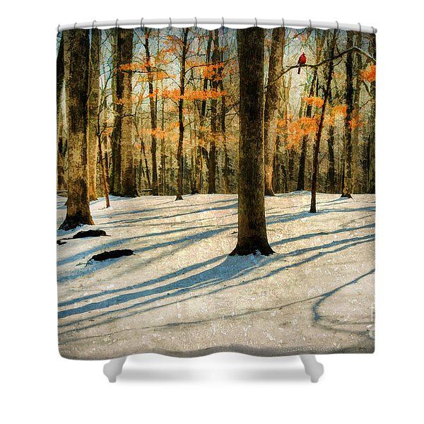 A Touch Of Autumn Shower Curtain by Darren Fisher