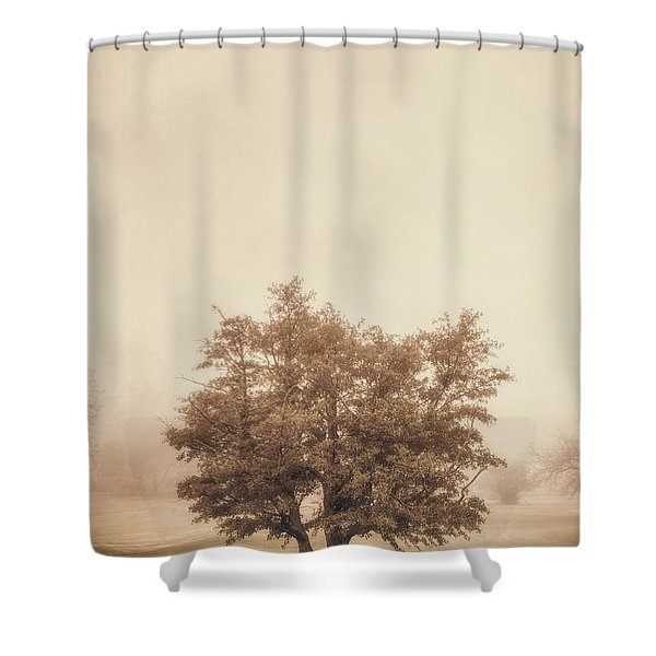 A Tree in the Fog Shower Curtain by Scott Norris