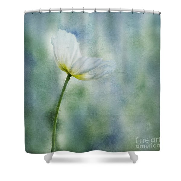 a vision of delight Shower Curtain by Priska Wettstein