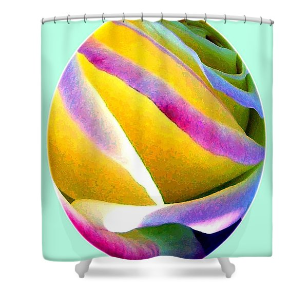 Abstract Rose Oval Shower Curtain by Will Borden