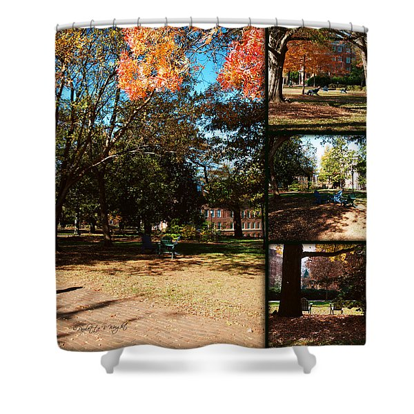 Adirondack Chairs Collage2 Shower Curtain by Paulette B Wright
