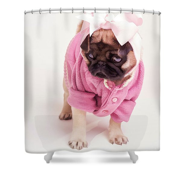 Adorable Pug Puppy in Pink Bow and Sweater Shower Curtain by Edward Fielding