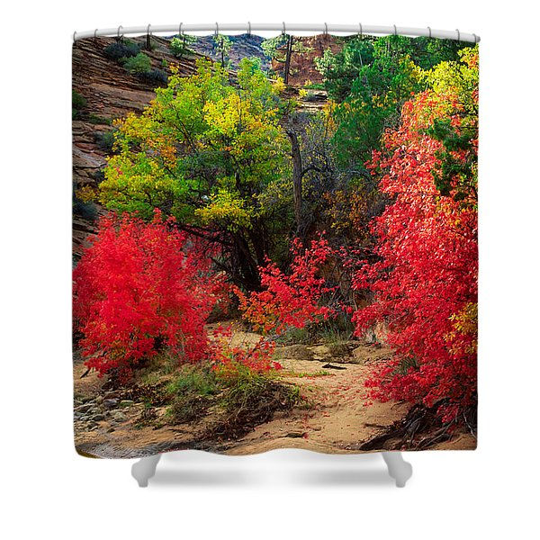 After The Flood Shower Curtain by Inge Johnsson