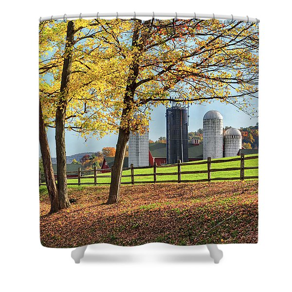 Afternoon Delight Shower Curtain by Bill  Wakeley