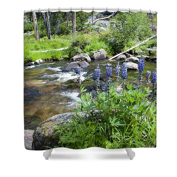Along The River Shower Curtain by Fran Riley