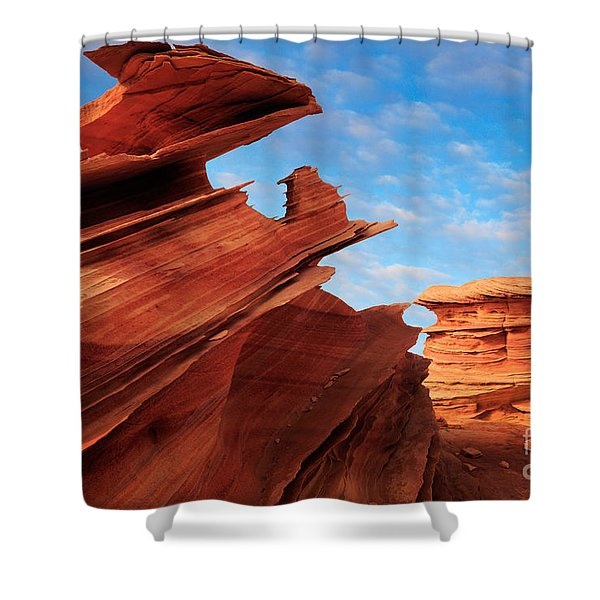 Altar of Sacrifice Shower Curtain by Inge Johnsson
