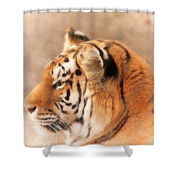 Amur Tiger Shower Curtain by Karol  Livote