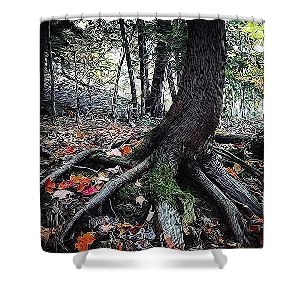 Ancient Root Shower Curtain by Natasha Marco