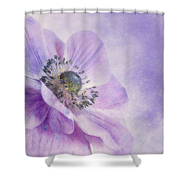 anemone Shower Curtain by Priska Wettstein