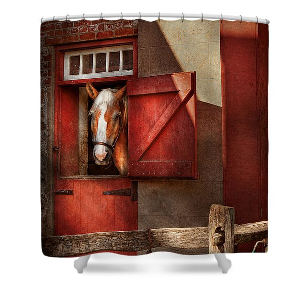 Animal - Horse - Calvins house  Shower Curtain by Mike Savad