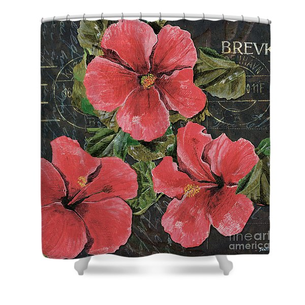 Antique Hibiscus Black 3 Shower Curtain by Debbie DeWitt