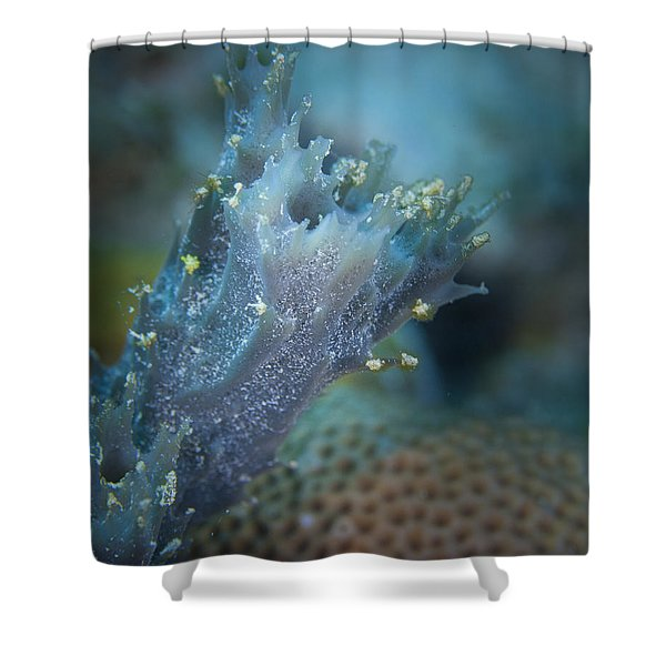 Appendage Shower Curtain by Jean Noren