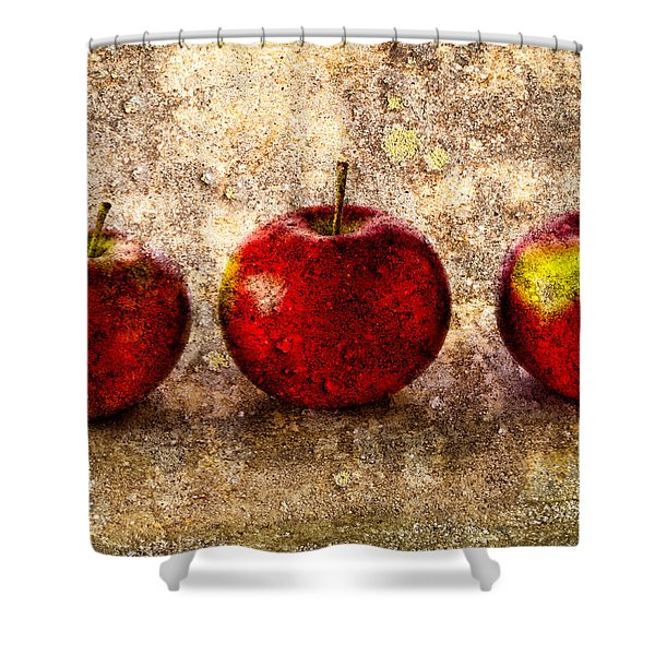 Apple Shower Curtain by Bob Orsillo