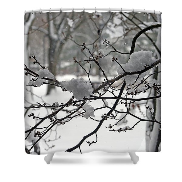 April Snow Shower Curtain by Kay Novy