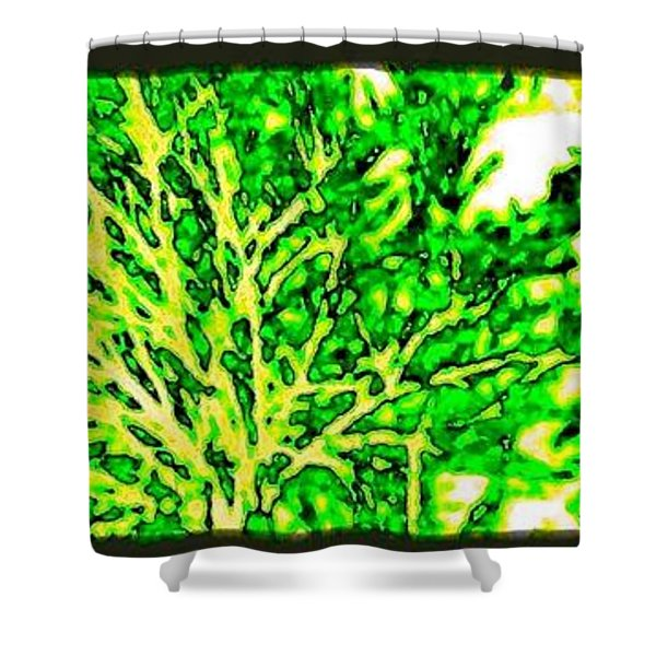 Arbres Verts Shower Curtain by Will Borden
