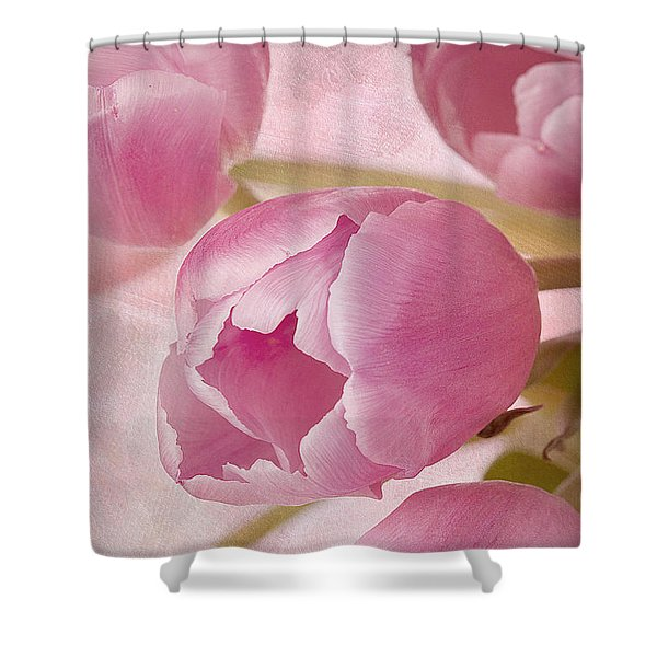 Aroma D'amor Shower Curtain by A New Focus Photography