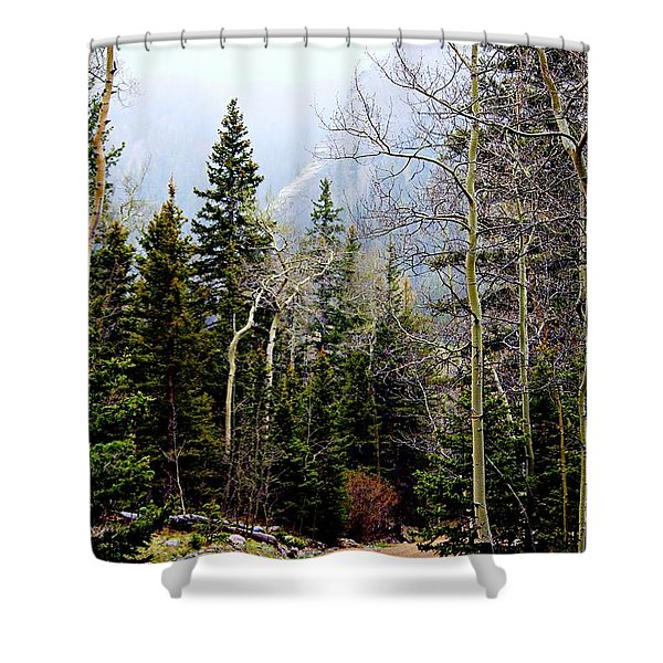 Around The Bend Shower Curtain by Barbara Chichester