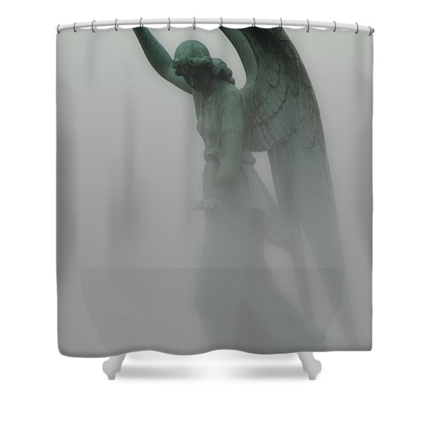 Ascending Shower Curtain by Jack Zulli