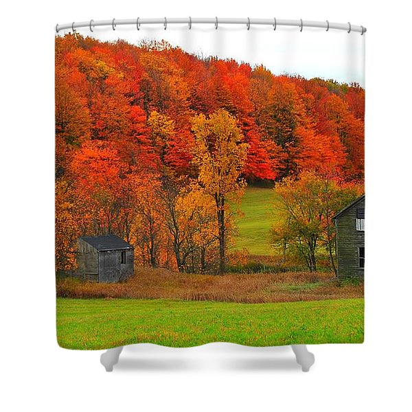 Autumn Abandoned Shower Curtain by Terri Gostola