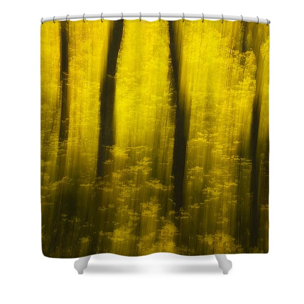 Autumn Apparitions Shower Curtain by Peter Coskun