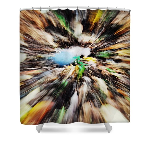 Autumn Colors Shower Curtain by Paul Ward