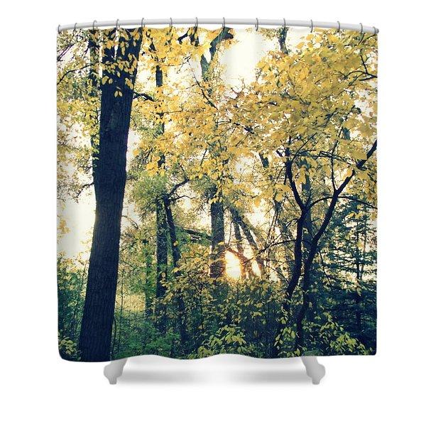 Autumn Evening Shower Curtain by Jessica Myscofski
