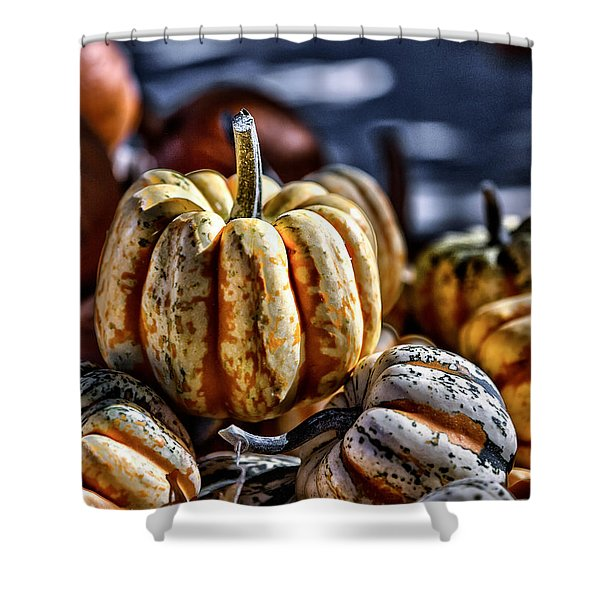 Autumn Glow Shower Curtain by Caitlyn  Grasso