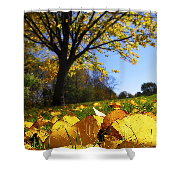 Autumn landscape Shower Curtain by Elena Elisseeva