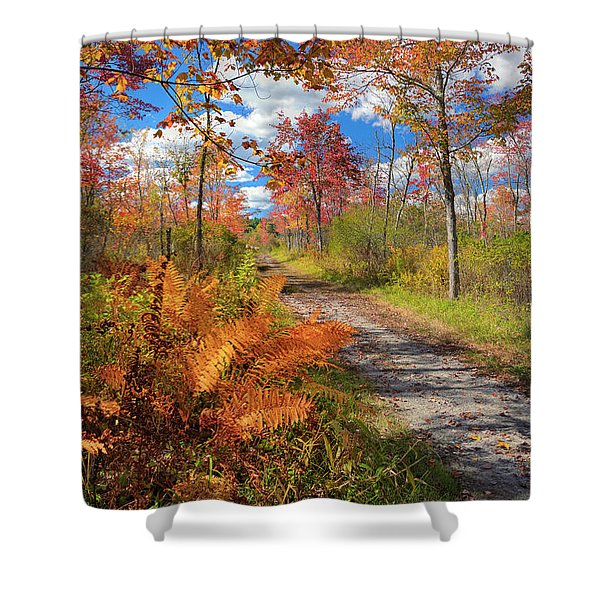 Autumn Splendor Shower Curtain by Bill  Wakeley
