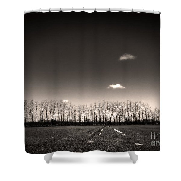 autumn trees Shower Curtain by Stylianos Kleanthous