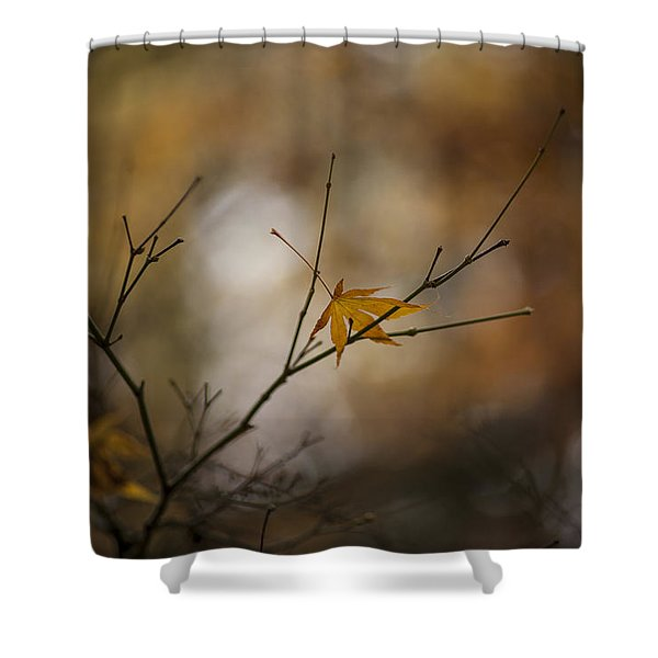 Autumns Solitude Shower Curtain by Mike Reid