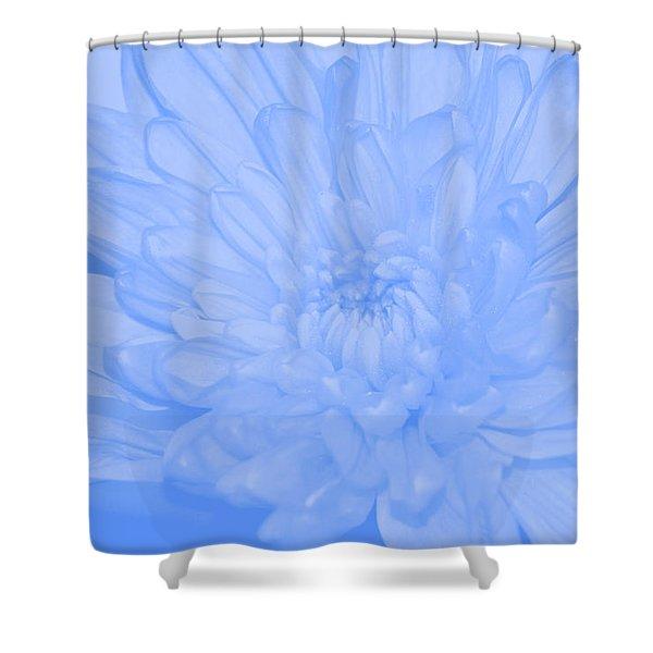 Baby Blue 3 Shower Curtain by Carol Lynch