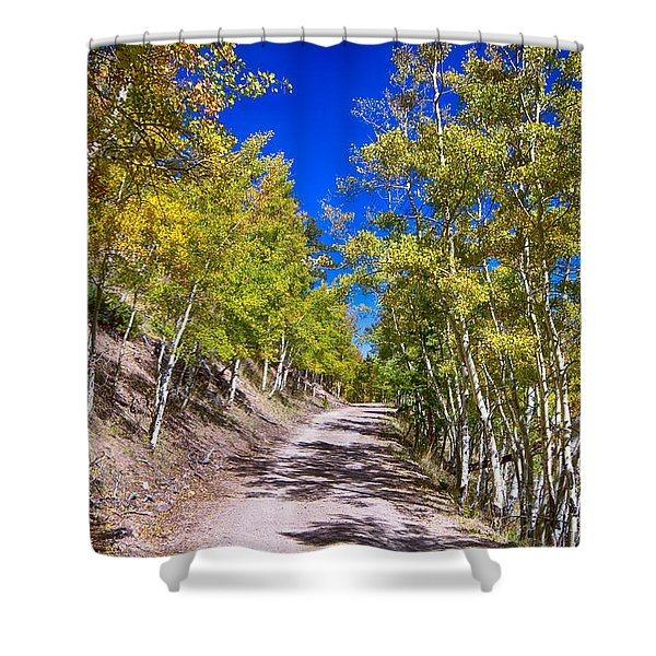 Back Country Road Take Me Home Colorado Shower Curtain by James BO  Insogna
