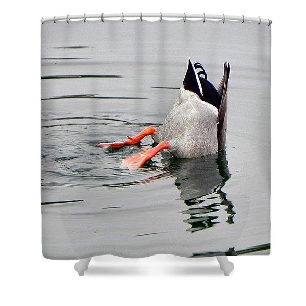 Bad Landing Shower Curtain by Deb Halloran