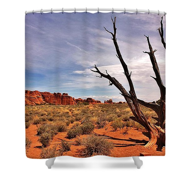 Bald Tree At Arches  Shower Curtain by Benjamin Yeager
