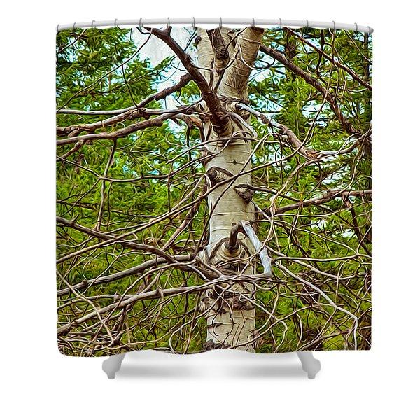 Bare Essentials Shower Curtain by Omaste Witkowski