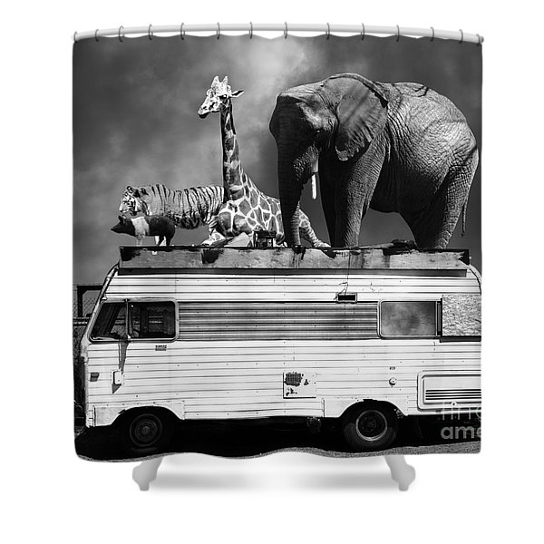 Barnum And Bailey Goes On A Road Trip 5d22705 Black And White Shower Curtain by Wingsdomain Art and Photography