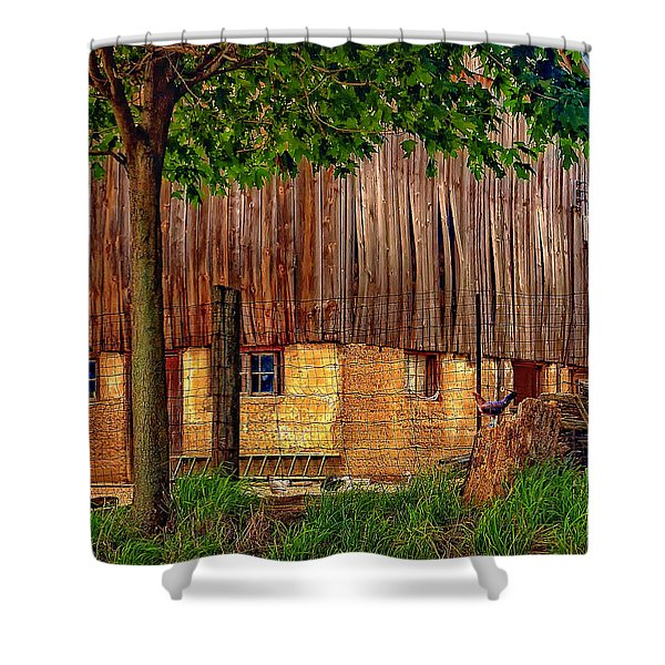 Barnyard Shower Curtain by Steve Harrington