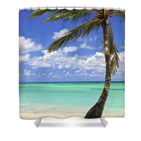 Beach of a tropical island Shower Curtain by Elena Elisseeva