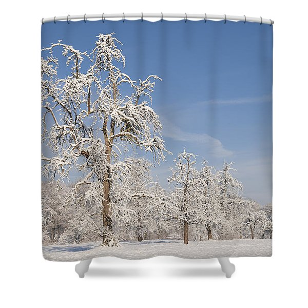 Beautiful winter day with snow covered trees and blue sky Shower Curtain by Matthias Hauser