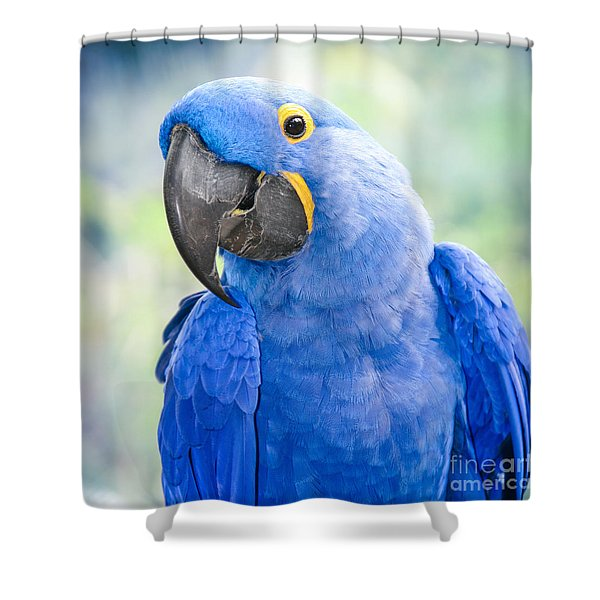 Beauty Is An Enchanted Soul Shower Curtain by Sharon Mau