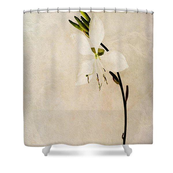 Beauty Shower Curtain by John Edwards