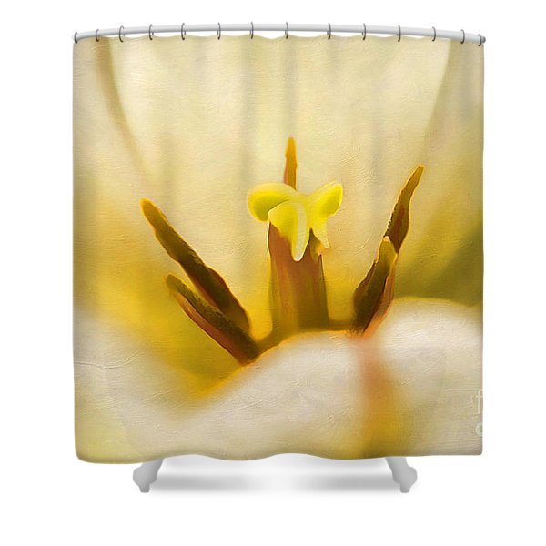Beauty Of Spring Shower Curtain by Darren Fisher